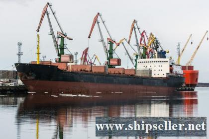 238. Arctic bulker - container ship DWT 23 000 t.