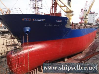 8527 T 90Blt MPP CONTAINER SHIP FOR SALE