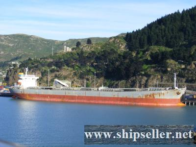 2002Blt 74204DWT Panamax Bulk Carrier for Sale